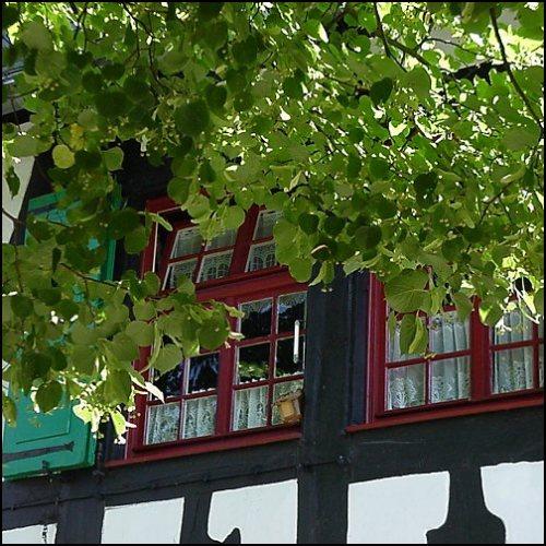 Hans georg wenke bilder aus solingen 58 solinger - Fenster solingen ...